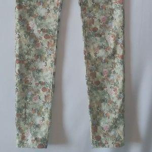 Hudson Floral Print Pants; Size 16